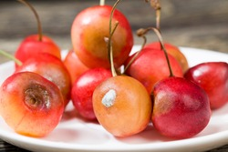rotten cherries on a wooden table, a few berries that have already started to rot and become covered with mold, not edible and dangerous to health cherry berries