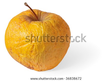 Rotten dry disgusting apple on a white background