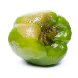 Rotten green bell pepper isolated on white background