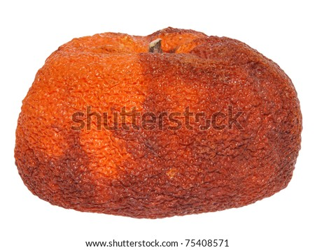 Rotten orange on white background - stock photo