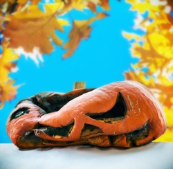 rotten pumpkin after the holiday Halloween on a background of autumn leaves