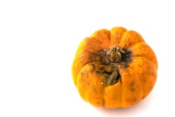 Rotten pumpkins isolated on white background. The rotten pumpkins has dark spots and less fiber & vitamin. The spoil  pumpkin is unhealthy and has bacteria which is dangerous. Mold on food concept.