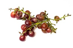 Rotten red grapes isolated on white background