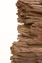 rotten wood background