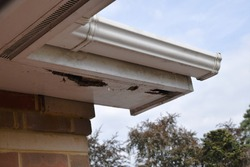 Rotten wood on roof soffits, guttering above and brick wall below. Sky and trees in background.
