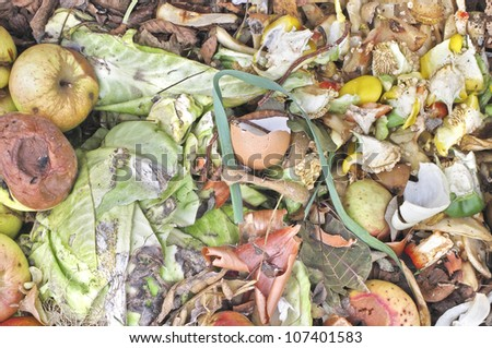 Rotting apples and kitchen waste on a compost heap