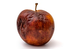 Rotting apples, decay and food waste concept with photograph of unhealthy decayed bad apple isolated on white background with clipping path cutout