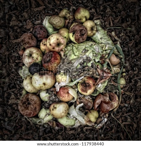 Rotting Apples on a Compost Heap/Artistically alienated to create a grungy somber atmosphere