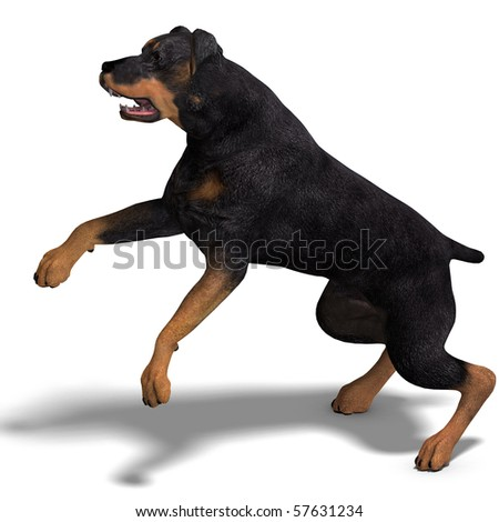 Rottweiler Dog. 3D rendering with clipping path and shadow over white
