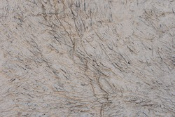 Rough figured plaster of gray color.