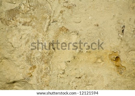 Rough limestone surface useful as texture or background.