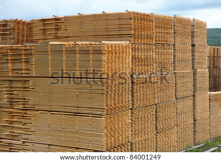 Rough sawn timber planks stacked for drying in timber yard.