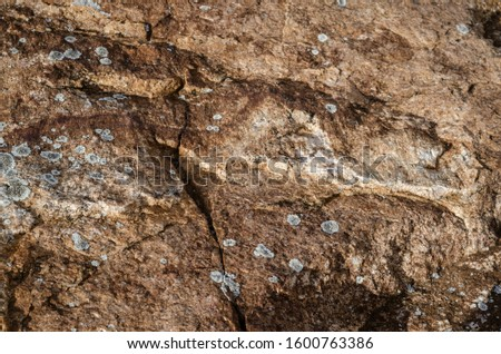 Rough surface of granite boulder with cracks and splotches of lichen