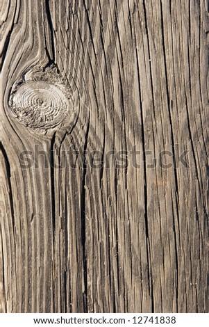 Rough wood texture closeup