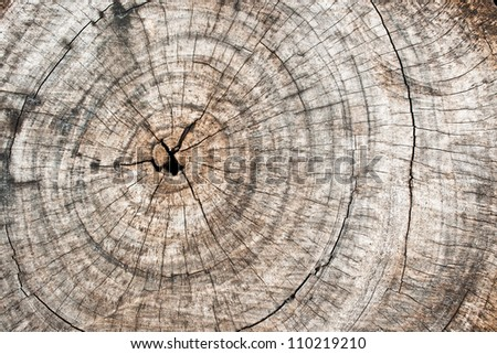 Rough Wooden