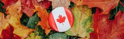 Round badge with Canadian flag. National symbol lying in autumn fall maple leaves. Thanksgiving autumnal holiday celebration in Canada. Web banner header.