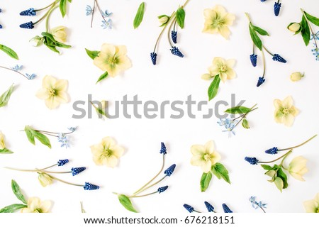 Stock Photo Round frame wreath with beautiful hellebore flower, muscari flower and leaf on white background. Flat lay, top view.