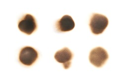 Round paper burn mark stain isolated over the white background , set of several different foreshortenings