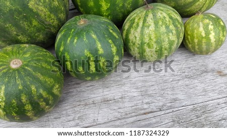 round striped watermelon #1187324329