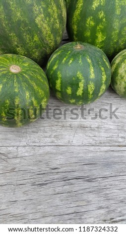 round striped watermelon #1187324332