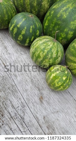 round striped watermelon #1187324335