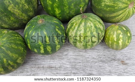 round striped watermelon #1187324350
