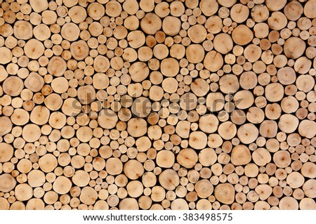Round teak wood tree circle stump cutted group background