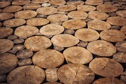 Round wooden log chopped, sidewalk. Sawn logs, close-up. Natural wooden background.