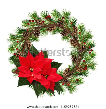 Round wreath from dry twigs and Christmas tree branches with red berries, cones, and poinsettia flowers isolated on white background. Flt lay. Top view. #1159289821