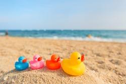 Row colorful ducks at the summer beach