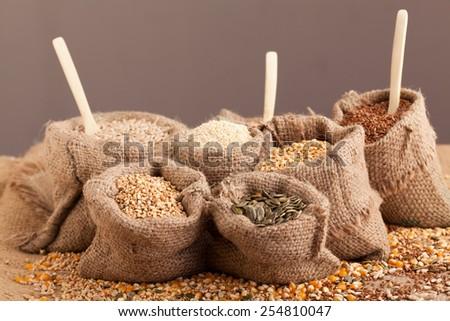 Row healthy grain food (corn, sesame, flax, buckwheat, wheat, pumpkin seeds, sunflower seeds ) in jute sack with wooden spoon