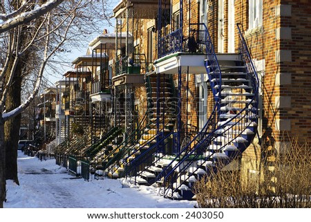Row houses on a tree-lined street with snow covering the ground