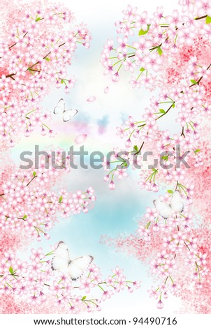 row of cherry blossom trees in the spring (daytime C)