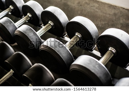 Row of dumbbells in the gym