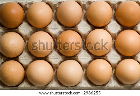 Row of eggs in box - top down view