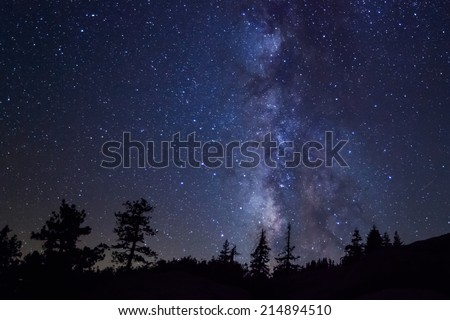 Row of evergreen trees in front of the Milky Way at Glacier Point in Yosemite National Park #214894510