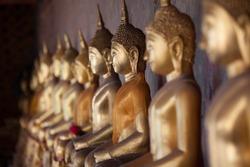 Row of Golden Buddha in Thailand (Bangkok, Thailand)