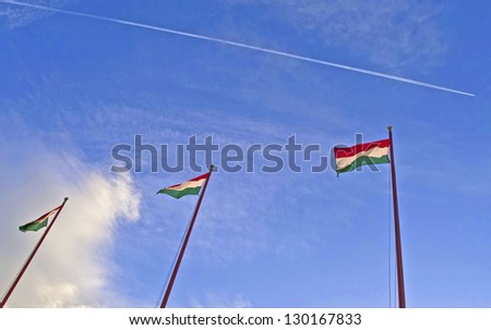 Row of Hungarian flags