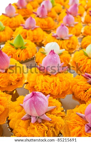 Row of lotus and yellow flower garlands on tray with pedestal in thai temple,Thailand. - stock photo