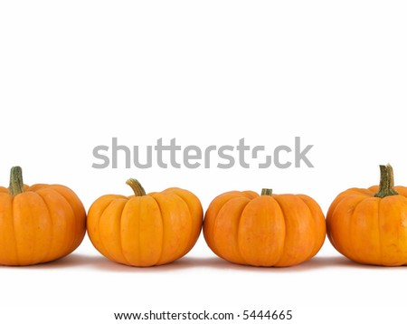 Row of pumpkins on white