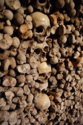 Row of skulls as artwork in a wall full of bones. Ancient medieval churcch artwork of skeletons. Memento mori cementery artwork. Very creepy and scary close up.