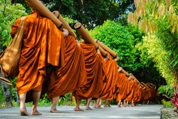 Row of Thai Monks walking in the forest for Buddha's Dharma.