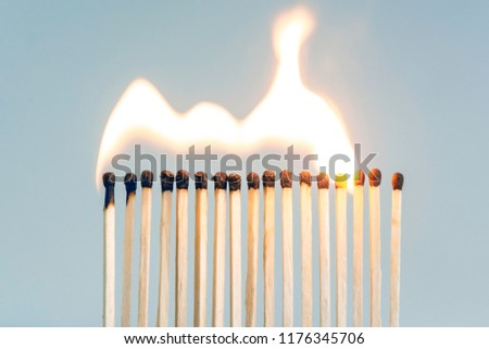 row of wooden matches, the fire swiftly moves from match to match #1176345706
