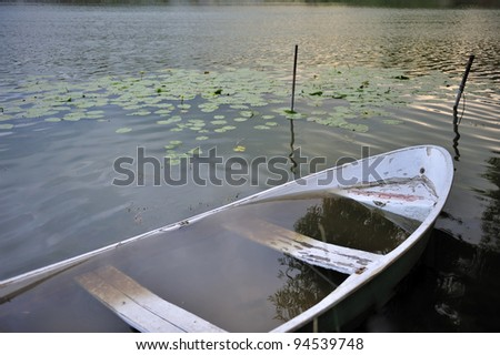 Rowboat filled of the water against water lilies