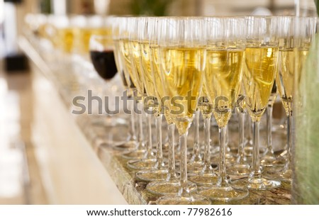 Rows of champagne flutes on bar counter, shallow focus