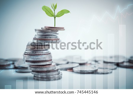 rows of coins for finance and business,Saving money and account finance bank business concept.