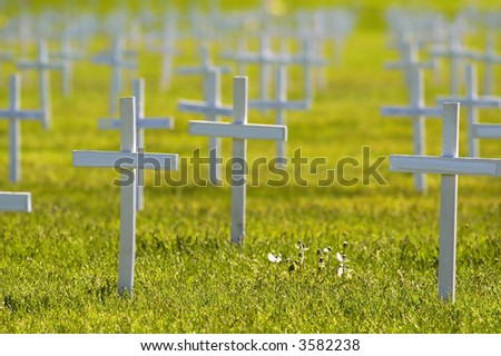 Rows of crosses honoring soldiers killed at war