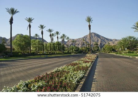Rows of Palm trees, mountains, flowers, blue skies and open roads in Indian Wells, California near Palm Springs.