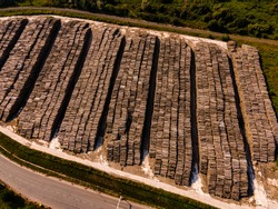 Rows of piled of logs , waiting to be processed. Log spruce trunks pile. Sawn trees from the forest. Logging timber wood industry. wood in stock