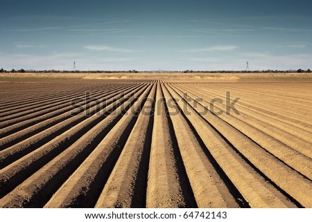 Rows of Soil - stock photo